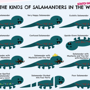 Scratch Garden Kinds of Salamanders Poster