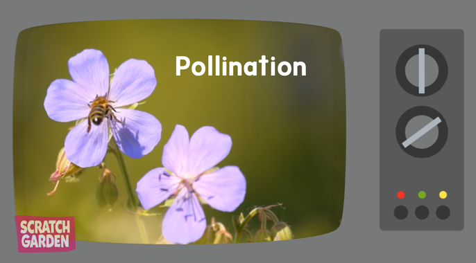 Learn about pollination with Scratch Garden's The Baby Bumble Bee Song